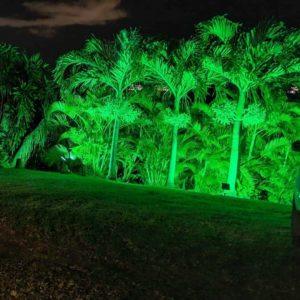eclairage_led_projecteur_exterieur_decoration_lumiere_verte_jardin_eco_energie_vue_deux