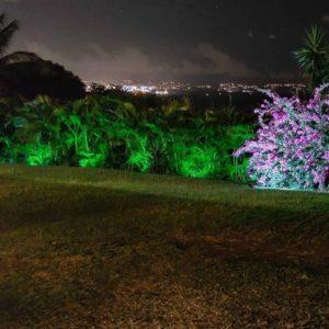 eclairage_led_projecteur_exterieur_decoration_lumiere_verte_jardin_eco_energie_vue_un