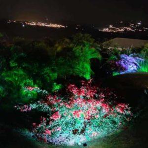 projecteur_exterieur_led_eclairage_decoratio_jardin_solaire_eco_energie